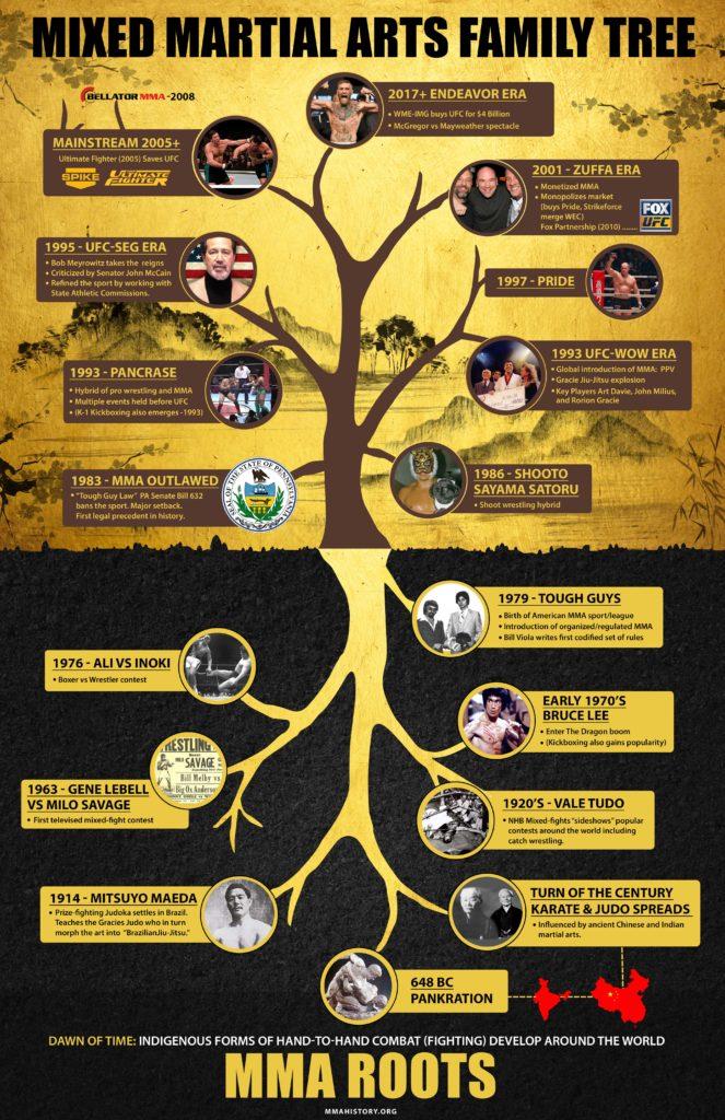 History of MMA